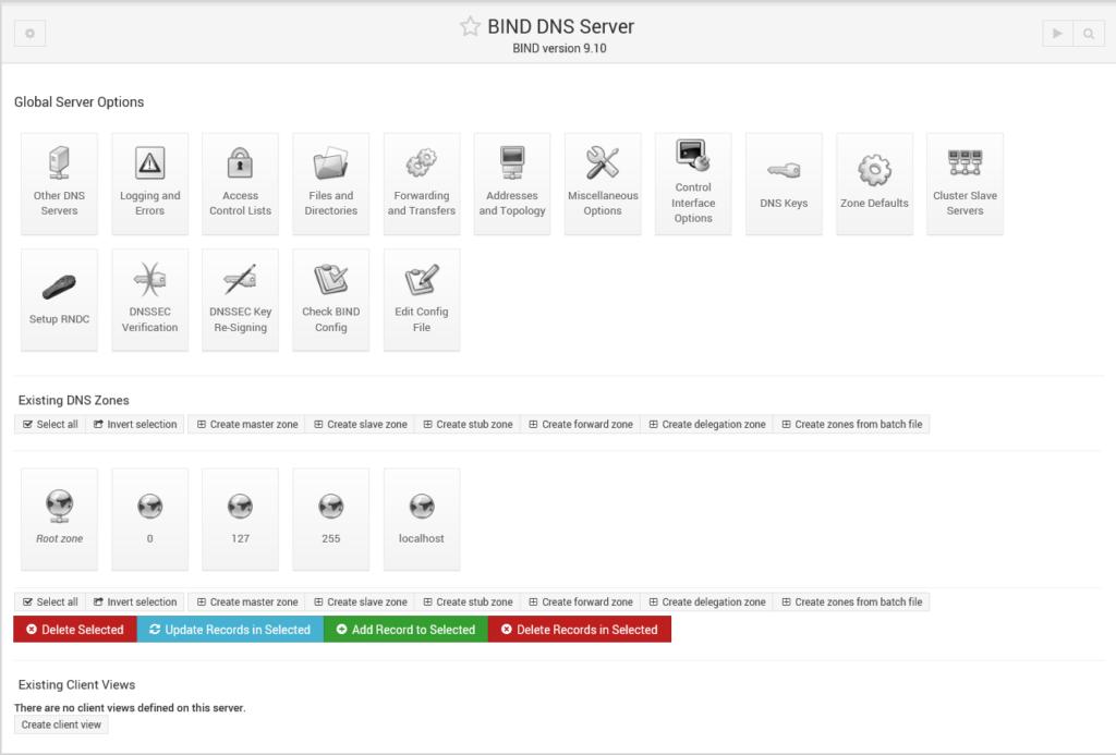 Installazione e Configurazione del DNS Server BIND su Raspberry tramite Webmin