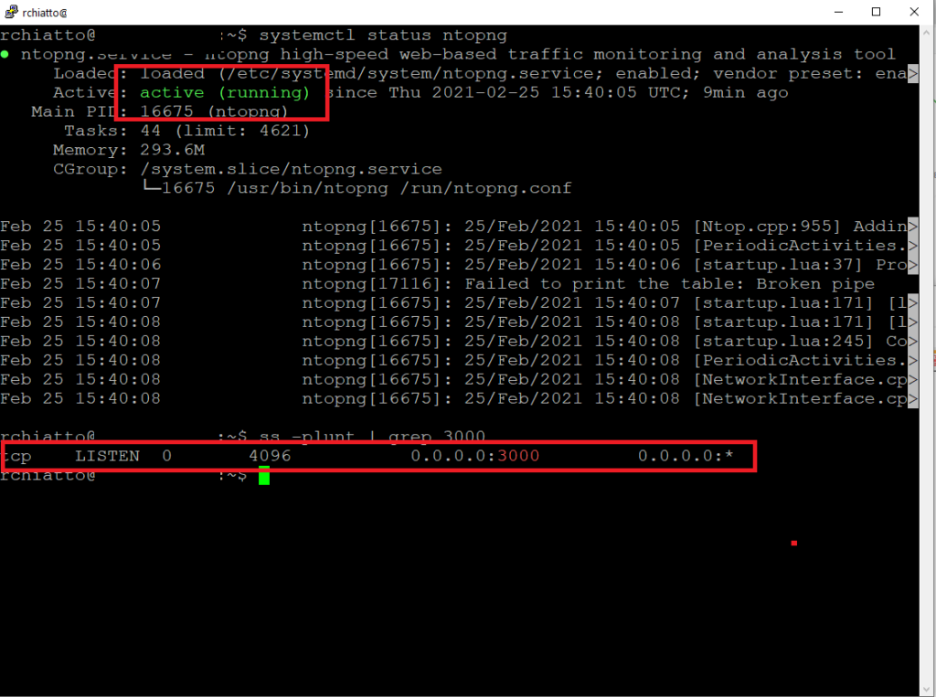 Installazione e Configurazione base di NtopNG su Ubuntu 20.04